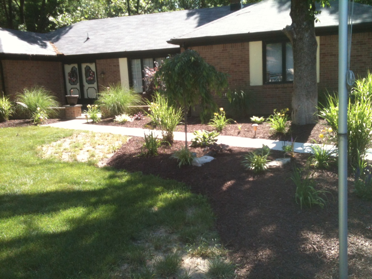 Designed Planted 2011